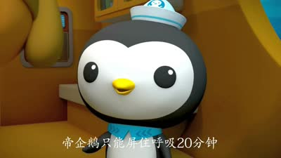 海底小纵队第四季21海底小纵队与帝企鹅