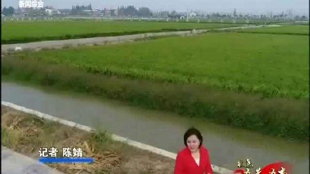 """【聚焦""""五先五市""""推进高质量发展】南县篇1"""