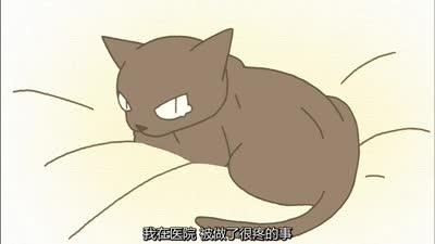 佝偻猫007话