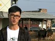 《让爱住我家》20131117:相牛达人张扬锦