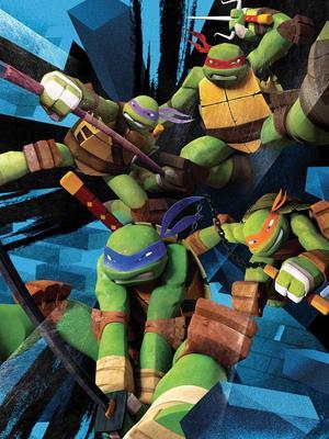 忍者神龟 第一季