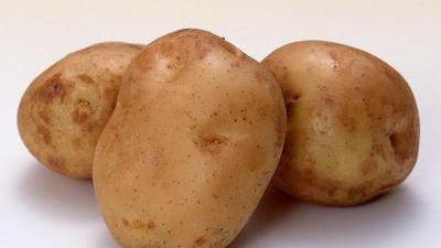 如何选择土豆 尖椒土豆的制作