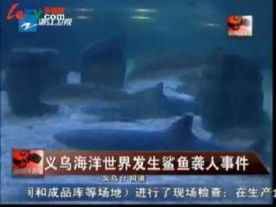 义乌海洋世界发生鲨鱼袭人事件