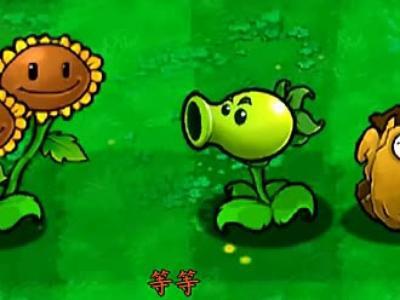 植物大战僵尸动画片