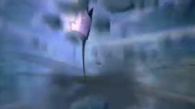 《虹猫仗剑走天涯》第50集