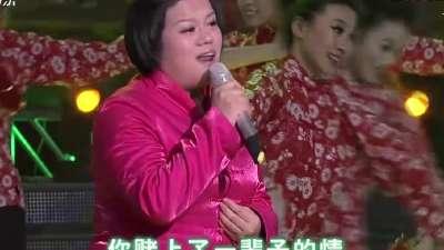 圆梦-山东卫视第八届全球华人网络春晚