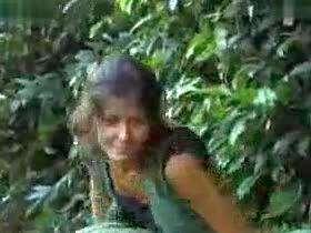 动物世界搞笑吐槽性行为之森林黑猩猩繁殖交配实录