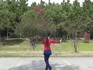 广场舞小苹果分解动作-动动广场舞 健身舞 广场