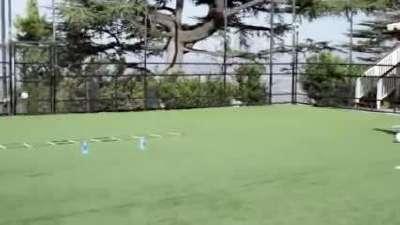 足球魔鬼训练课 球感&带球射门训练_百度影视