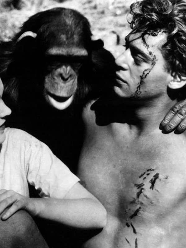 人猿泰山1932年版
