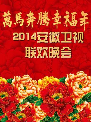 安徽卫视2014春晚海报