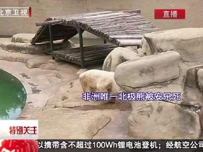 操非洲黑屄�_非洲唯一北极熊被安乐死